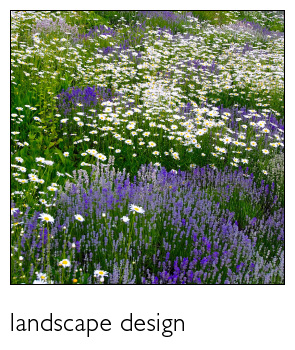 Landscape Design by Chris Ingalls